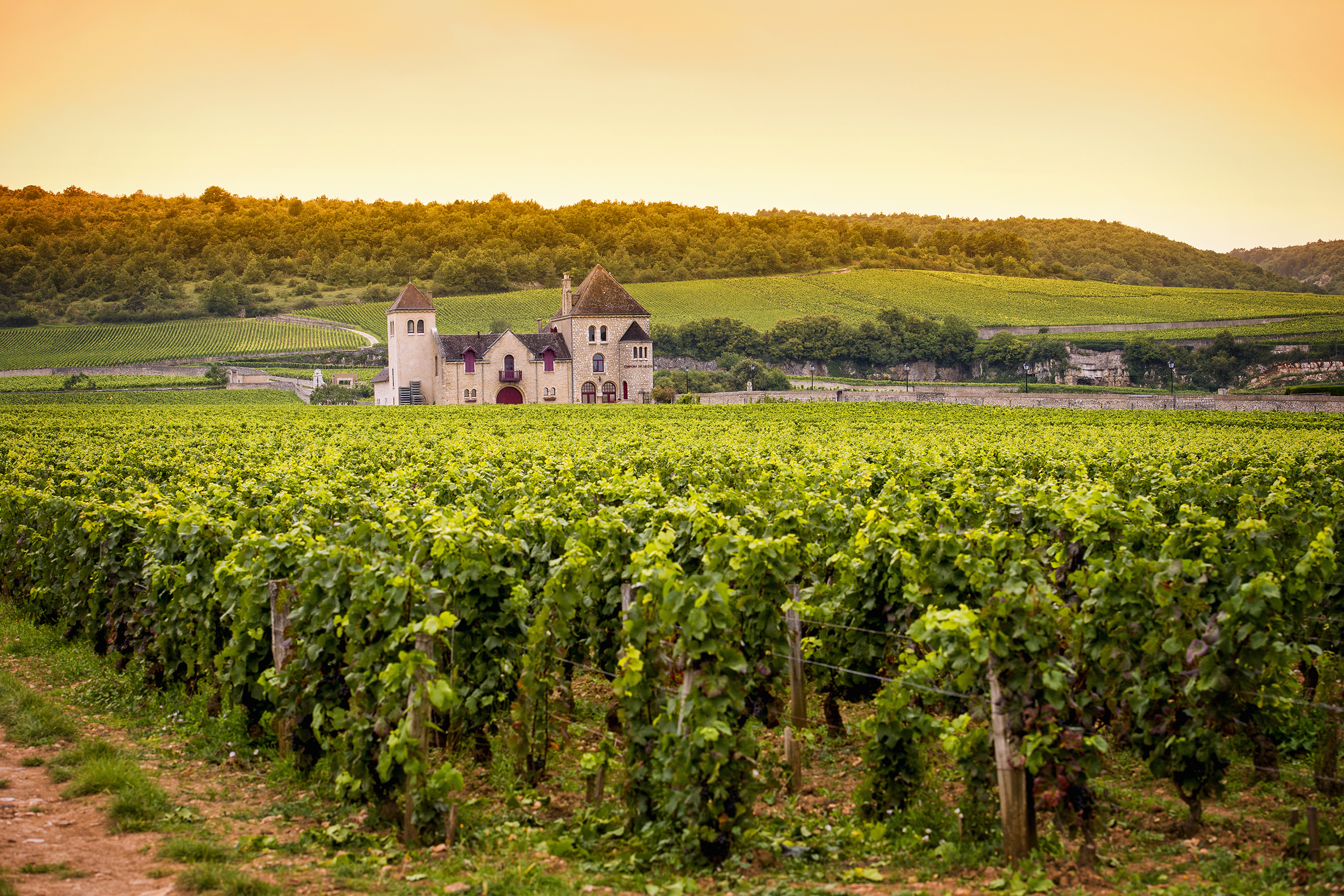 burgundy chateau 2500x1667